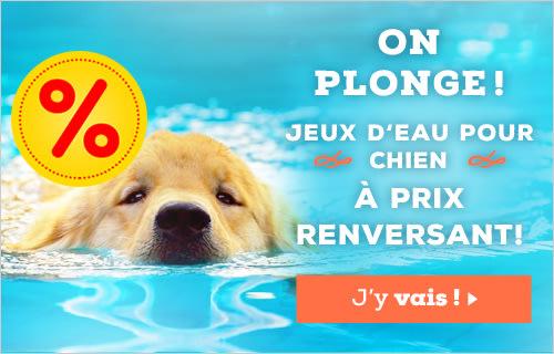6ce7b8a7927a40 bitiba.fr, l'animalerie 100 % discount | Alimentation pour animaux ...