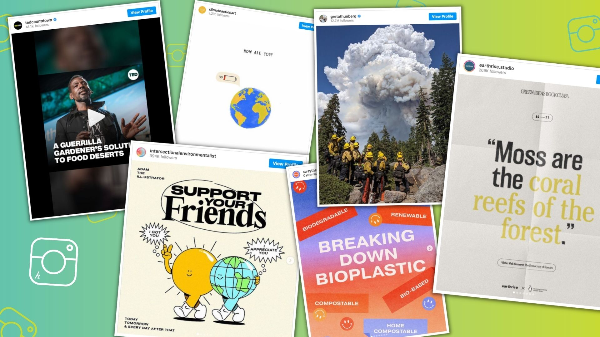 Educational Climate Action Accounts on Instagram