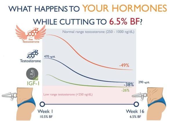 体脂肪率を6.5%まで落とすとホルモンはどう変化するか