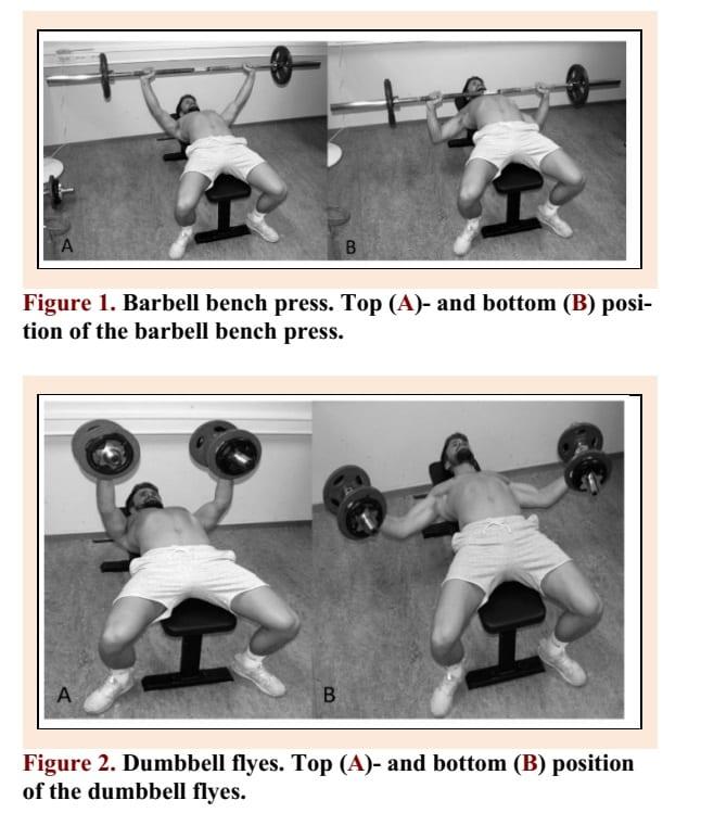 Barbell-bench-press-vs-dumbbell-flys