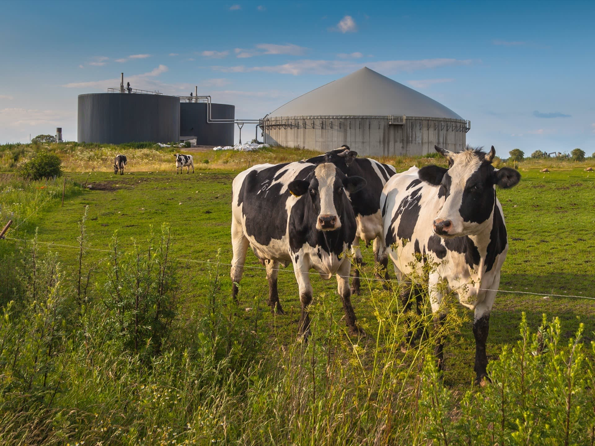 Power Purchase Agreement - Anaerobic digestion