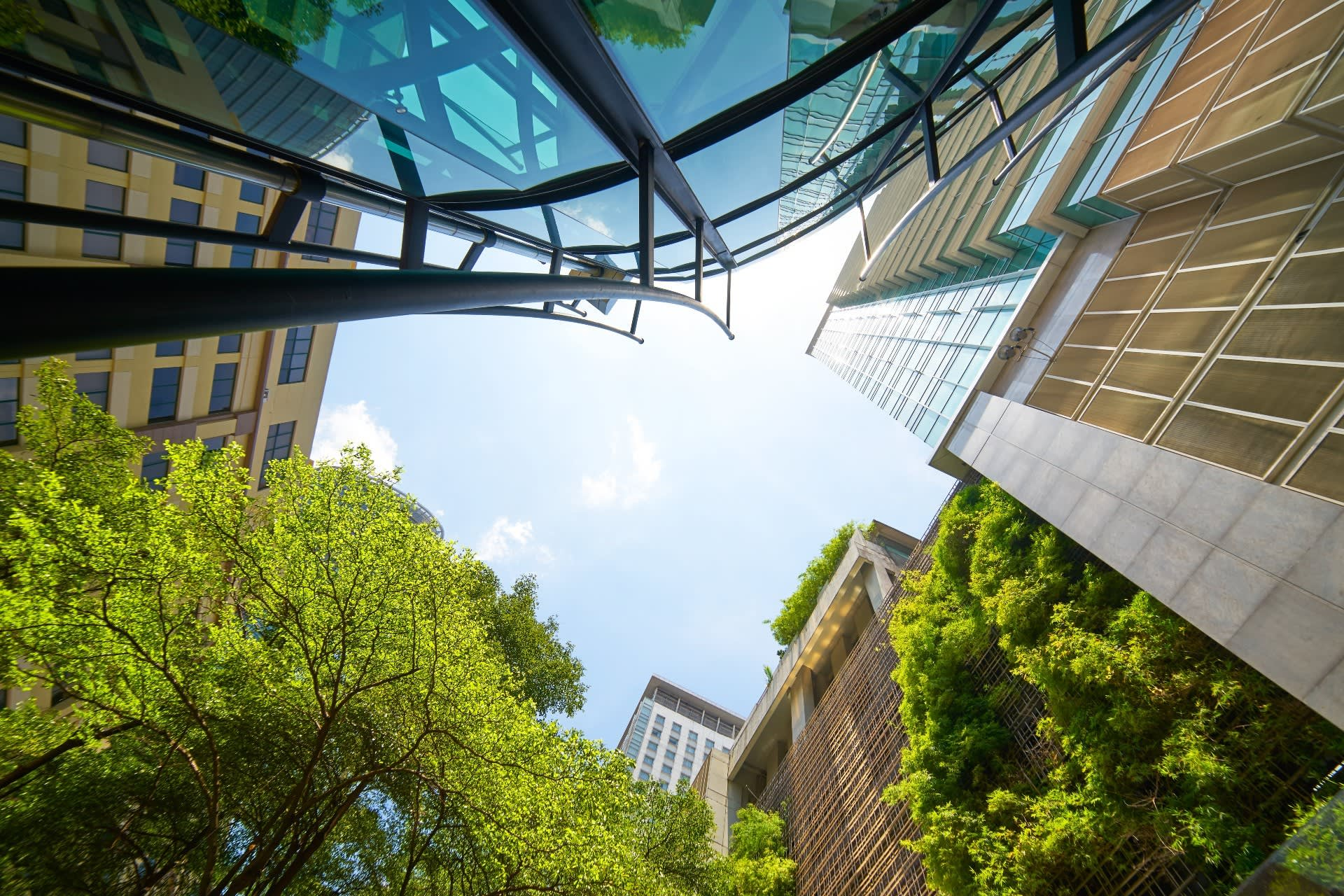 From CSR to ESG: How your business should be reporting sustainability - Hero Image