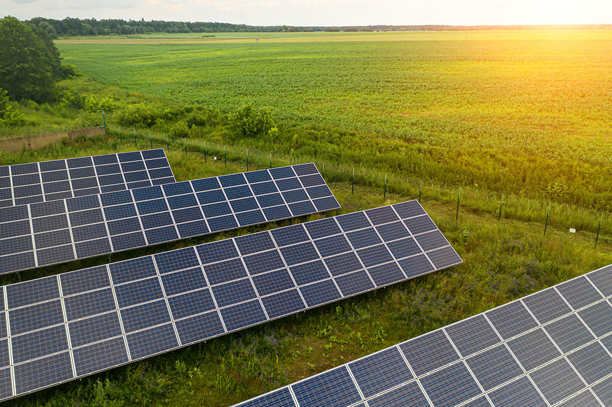 Success with solar article image