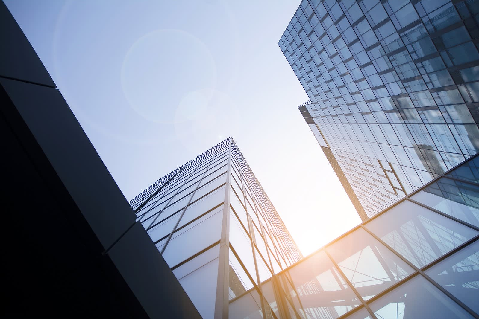 Net zero: What does it means for your organisation? - Hero
