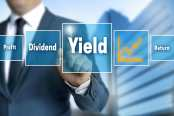 Dividend yield return and profit