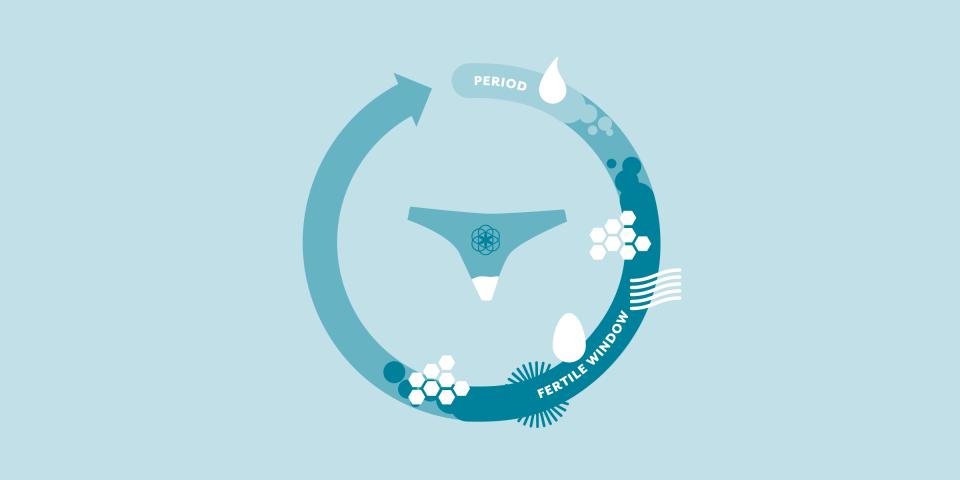 Clue Circle With Cervical Fluids