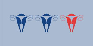 ilustration of three uteriblue and red