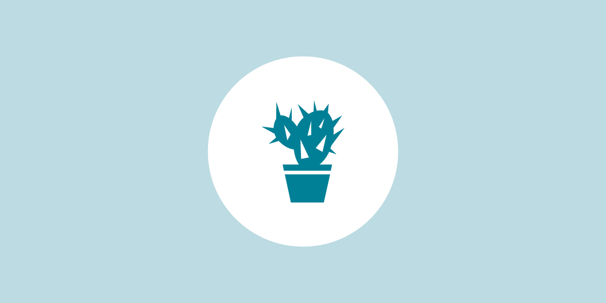 meet-clue-katrin-cactus@2x