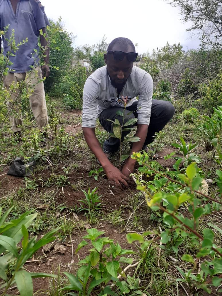 Expanding Kenya's Green Belt