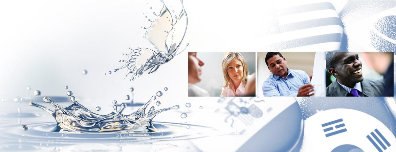 iiba multi-level certification handbook pdf