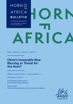 China's Inexorable Rise: Blessing or Threat for the Horn? front cover