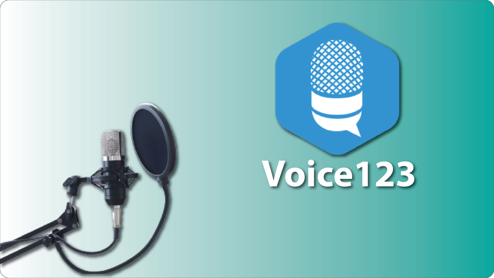 Mic With Voice123 logo