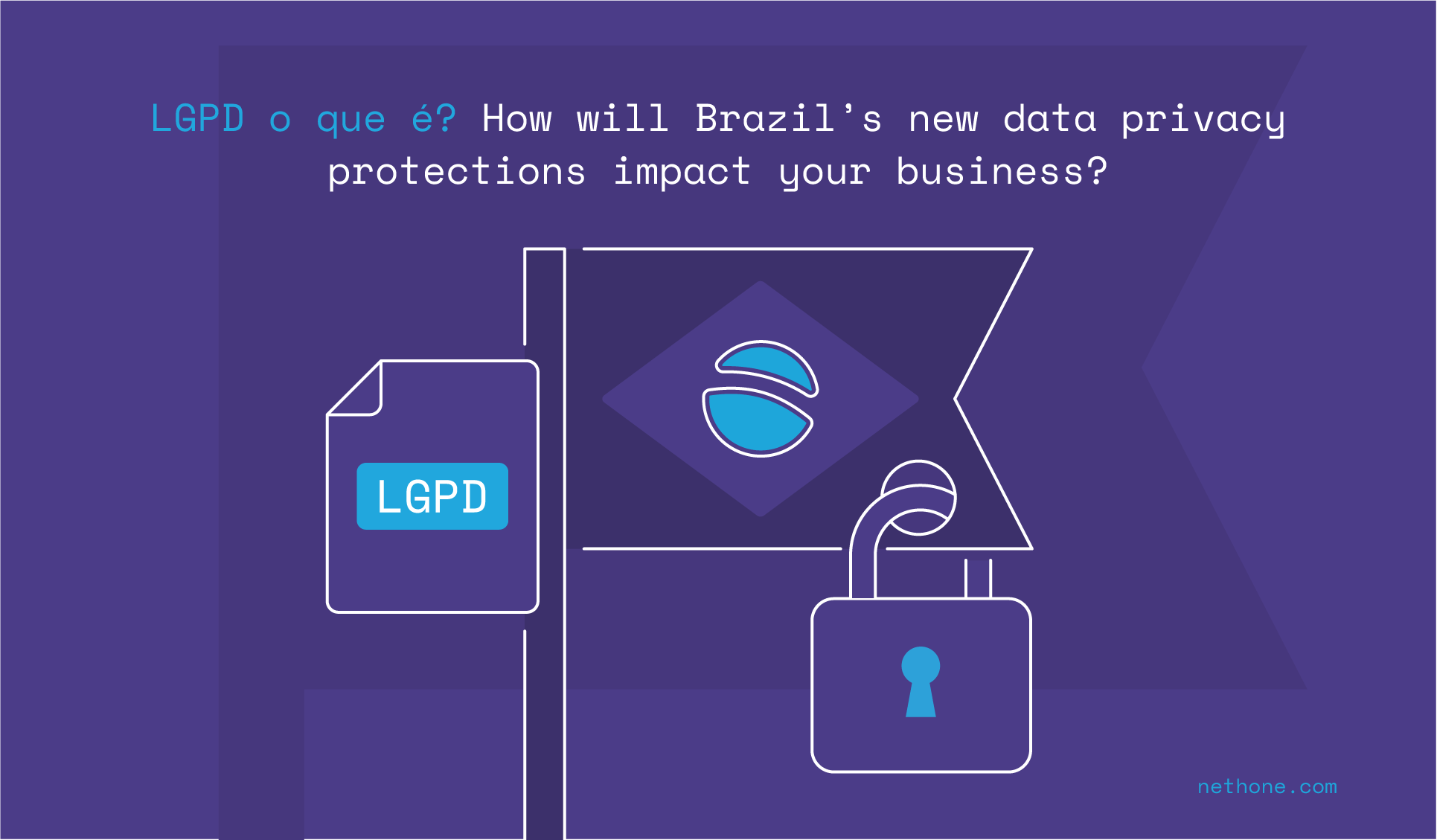 LGPD o que é? How will Brazil's new data privacy protections impact your business? a nethone blog post