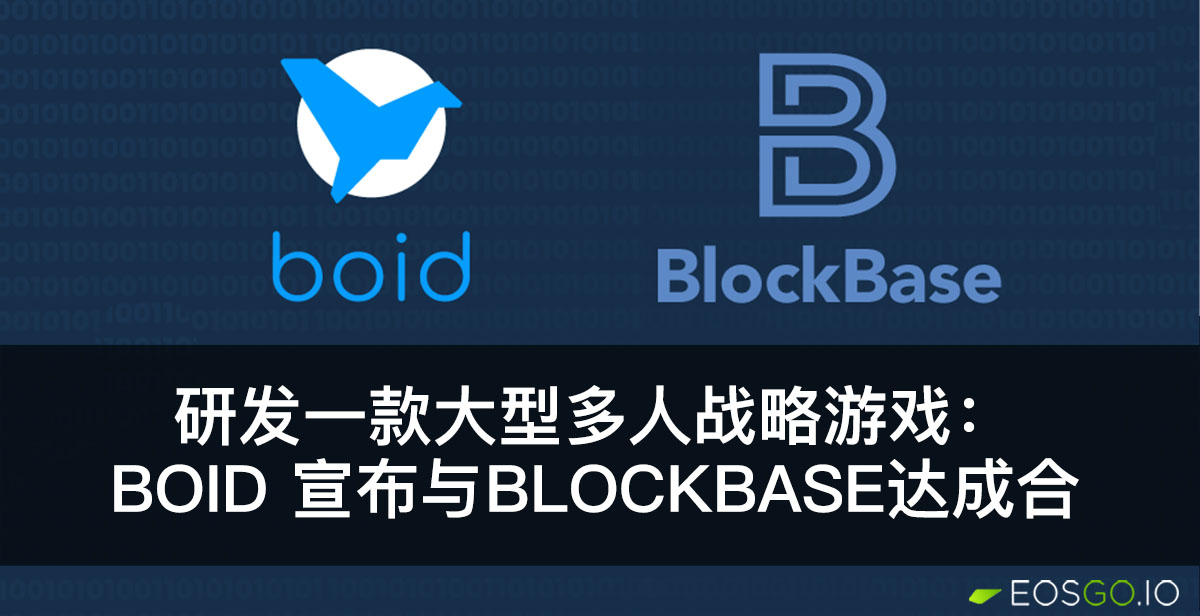 boid-and-blockcbase-parner-for-multiplayer-game-cn
