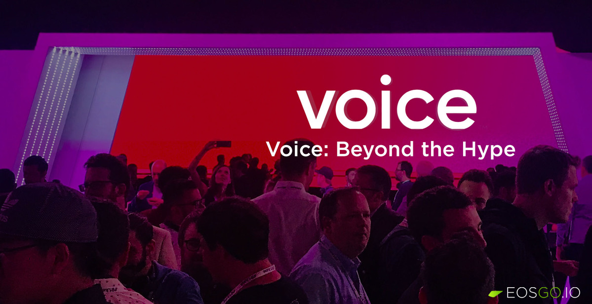 voice-beyond-the-hype-big