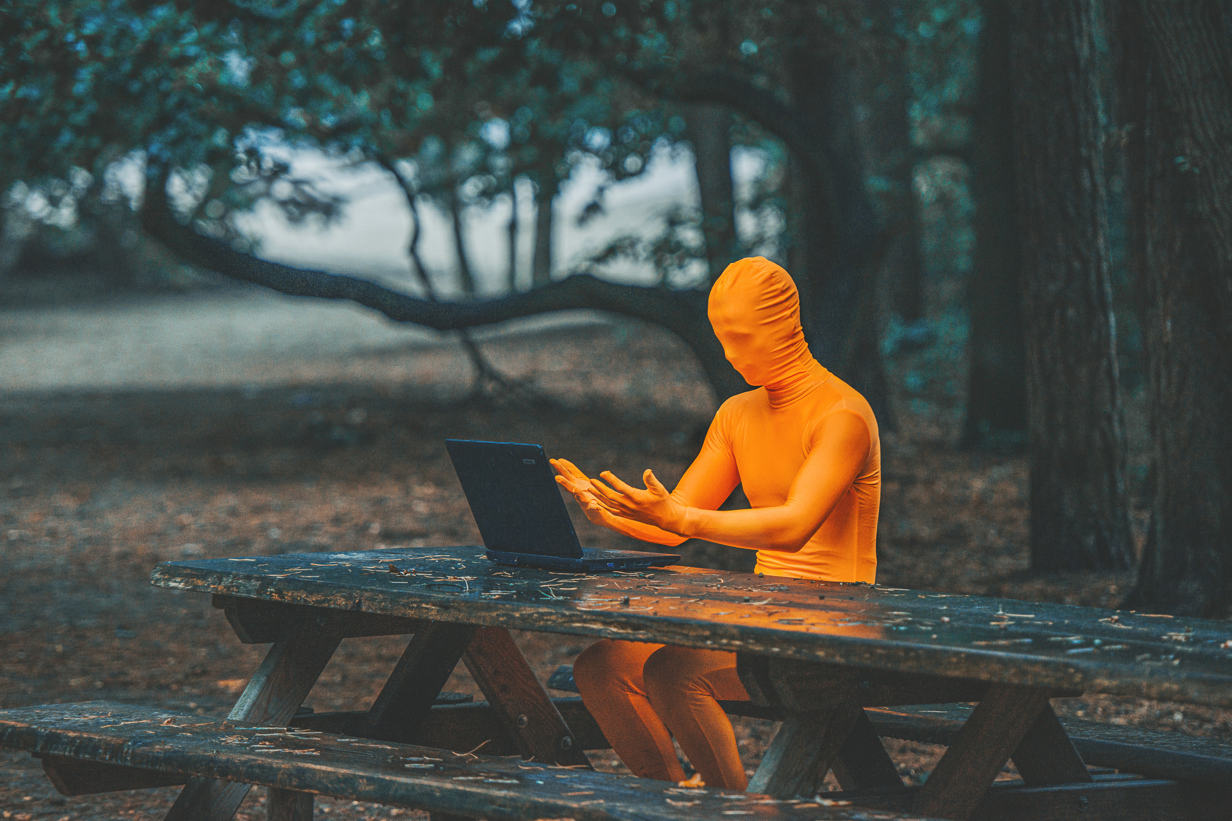 Orange person in forest with laptop