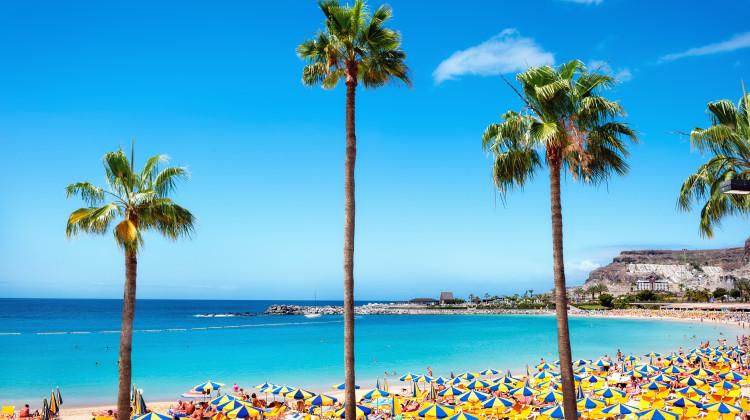 Pauschalreisen Gran Canaria Die Gunstigsten Angebote Bei
