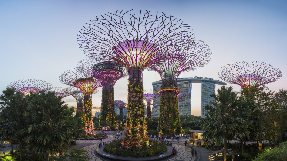 Gardens By the Bay, Central District
