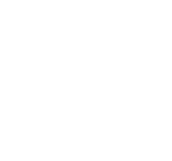 NYC - The Official Guide: 2017 Official Member