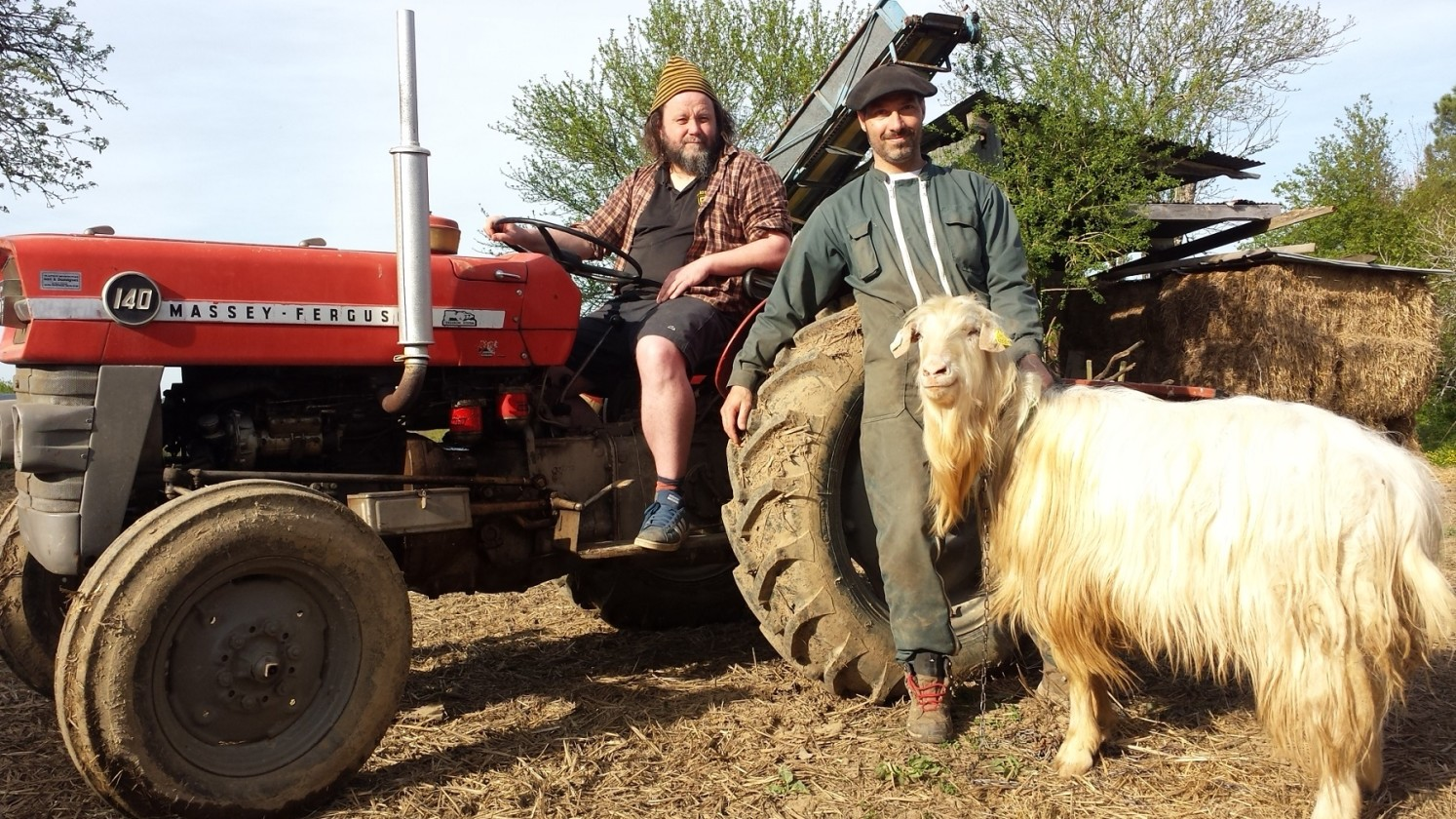 The Inspector Cluzo photo on tractor with goat