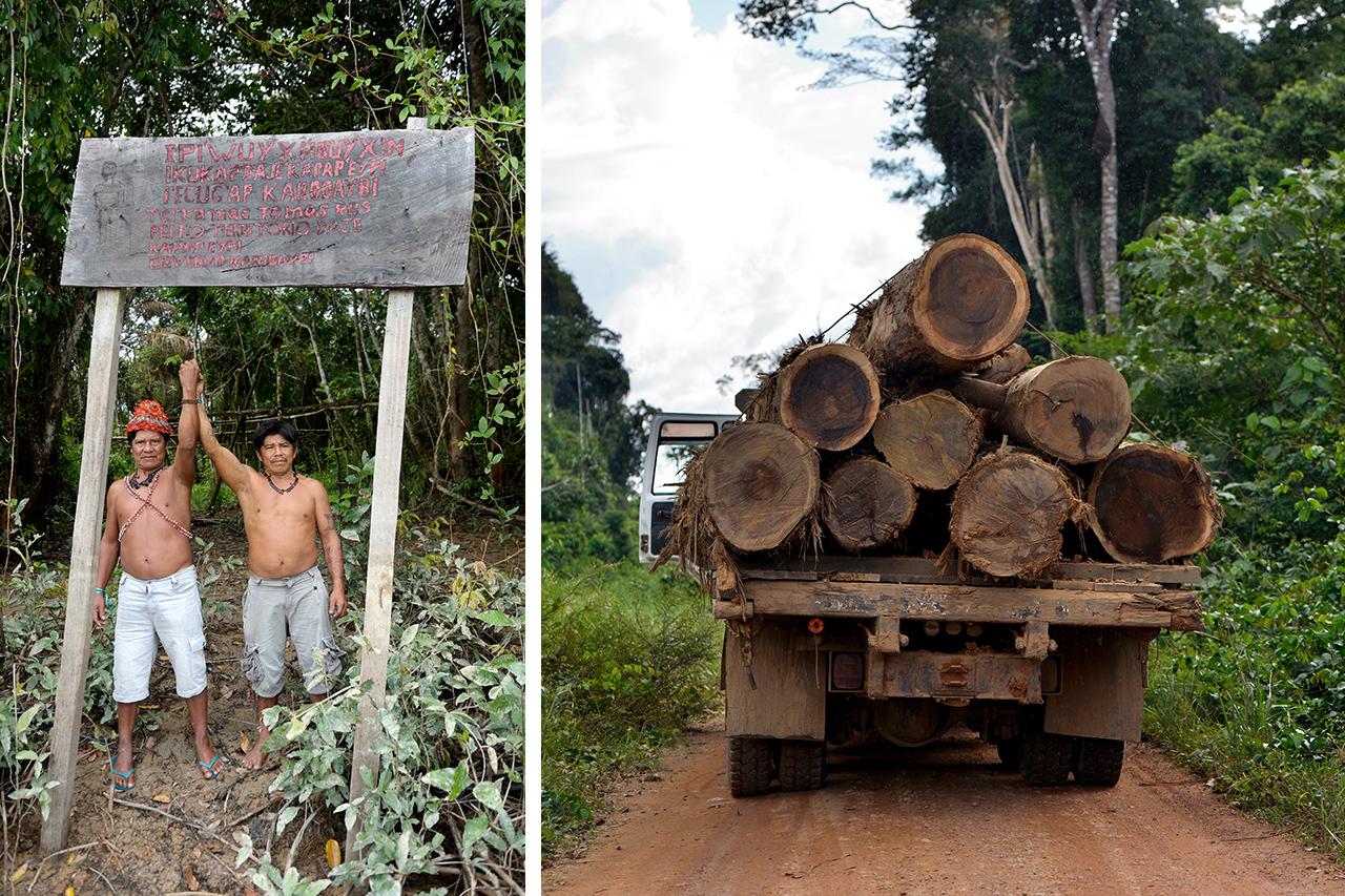 Brasilien - Für den Erhalt des Amazonas!