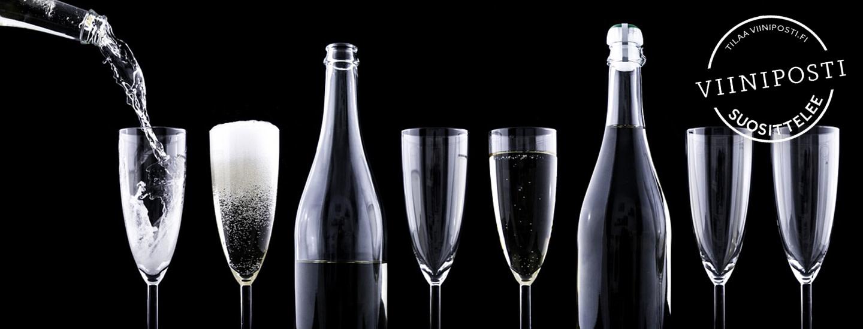 Ohjeita viinitastingiin