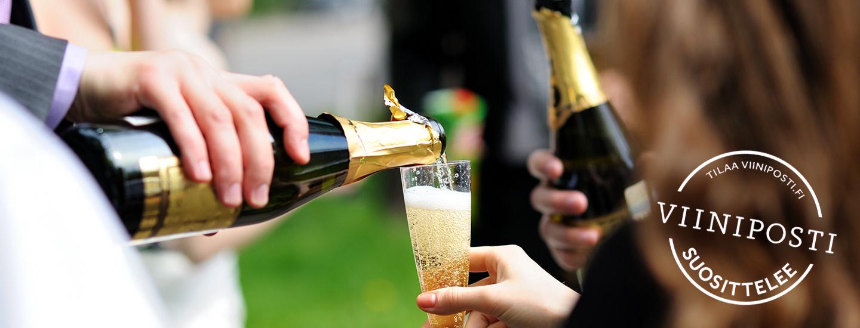 Paljonko viiniä ja kuohuvaa juhliin?