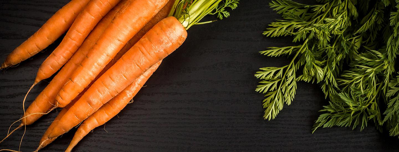 Popsi, popsi porkkanaa!