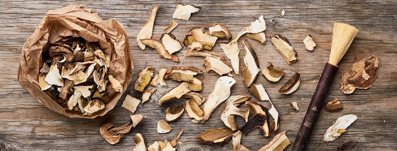 Sienten kuivaus – näillä vinkeillä säilöt sienisadon onnistuneesti