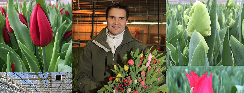 Lepolan ja Partaharjun puutarhoilla viljellään suomalaisia Pirkka-kukkia