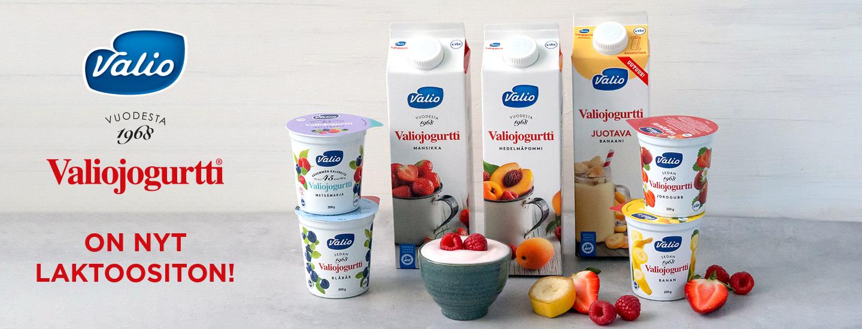 Suosikkijogurtit nyt laktoosittomina