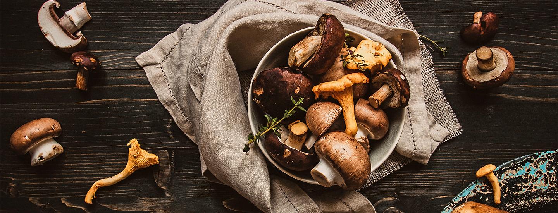 Sienten pakastaminen – 8 vinkkiä joilla onnistut