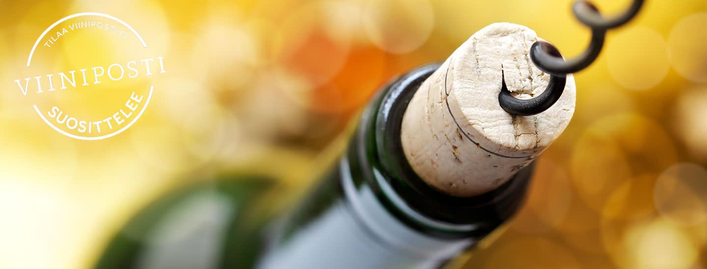 Miten säilyttää viinit oikein?