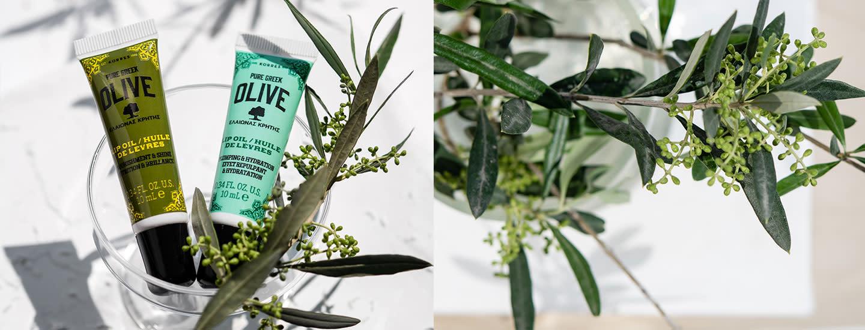 KORRES Pure Greek Olive – ravitse ihoasi kreikkalaisen oliiviöljyn voimalla