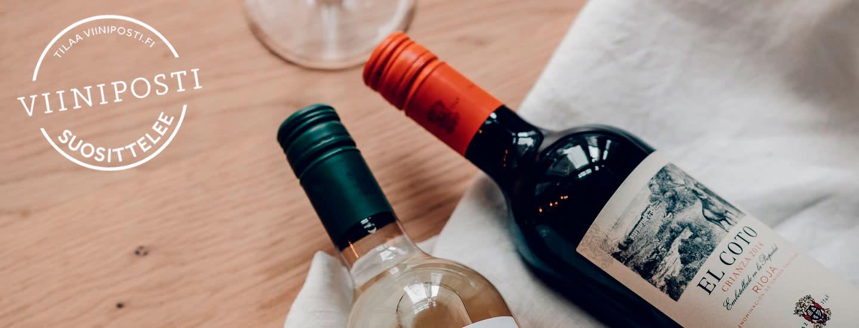 Parhaat viinit grilliruoalle