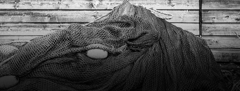 Pirkka Parhaat hyvää tekevän kalan syntysijoilla