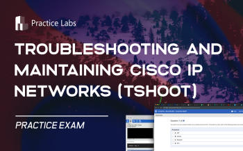 CCNP Troubleshooting and Maintaining Cisco IP Networks (TSHOOT