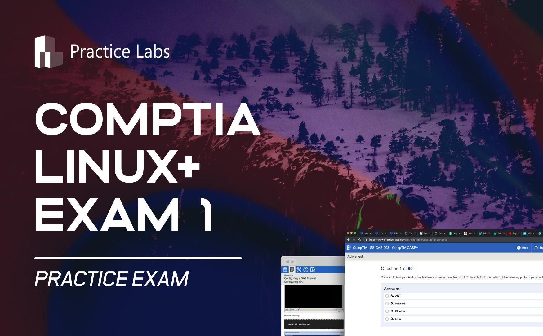 Practice Labs Exam