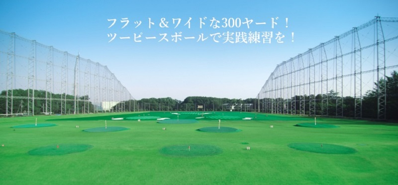 ゴルフプラザ伊奈