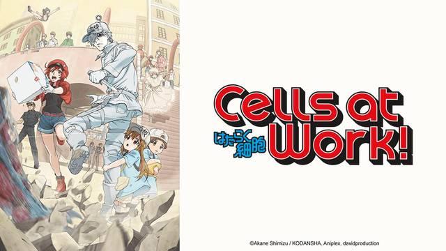Cells at Work artwork
