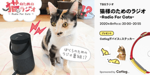 radio for cat ogp