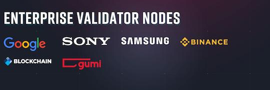 Enterprise validator nodes