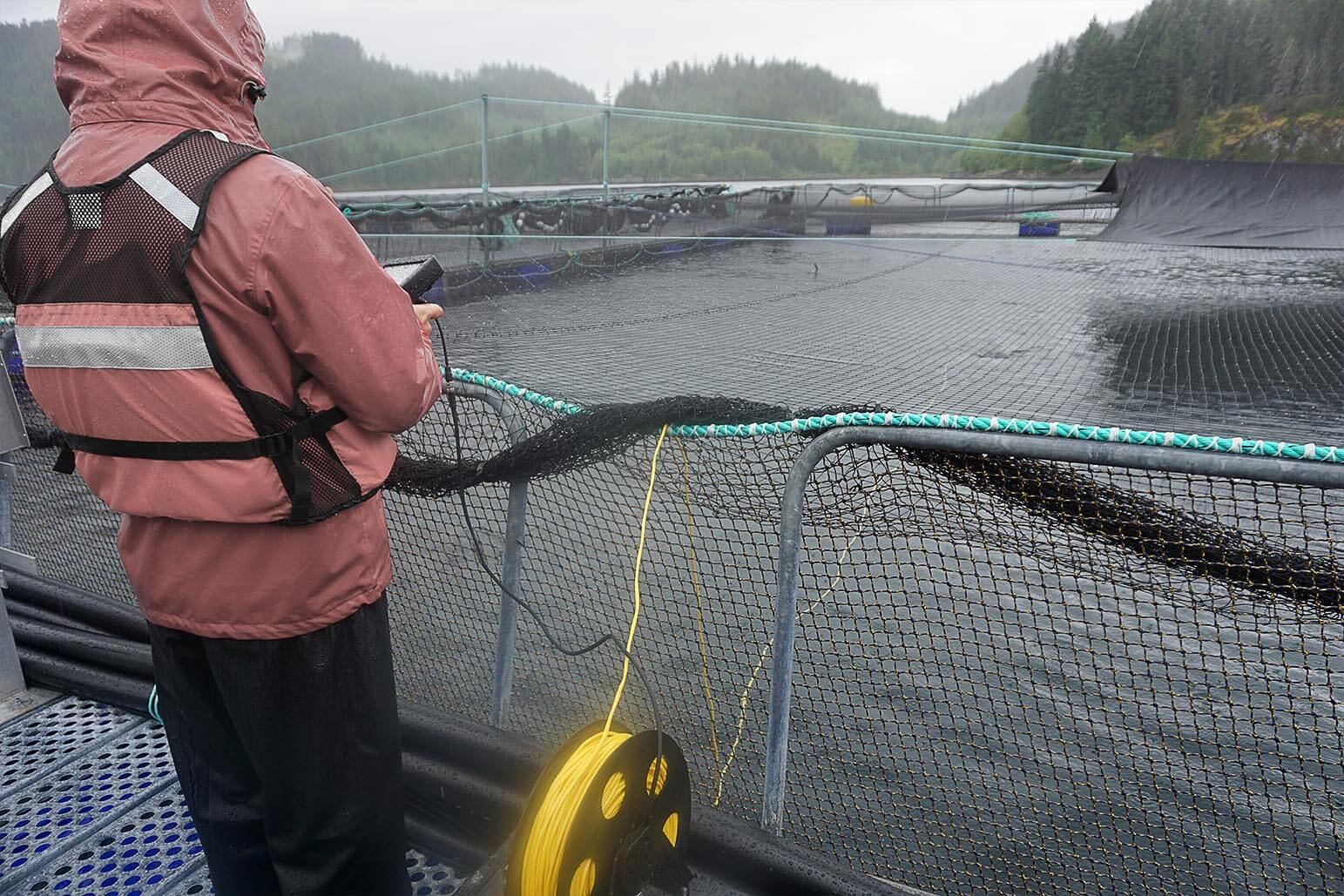 rov-regulating-aquaculture-industry.jpg