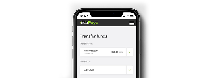 Withdraw money to your ecoPayz account
