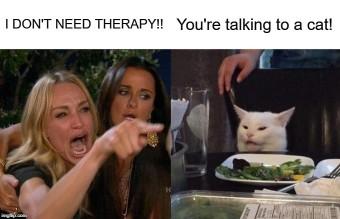 Woman-Yelling-At-Cat-Meme-Example-2