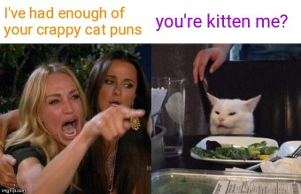 Woman-Yelling-At-Cat-Meme-Example-1