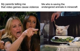 Woman-Yelling-At-Cat-Meme-Example-5
