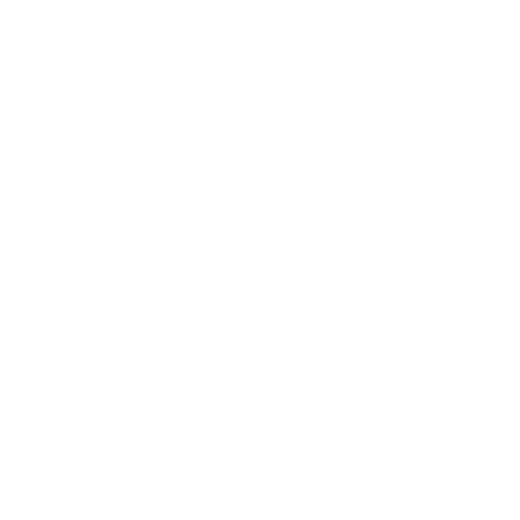 Retro Fighters