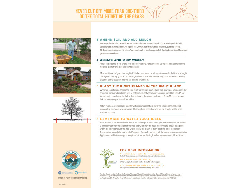 Colorado WaterWise – LLYLI Fact Sheet Drought lawn 2