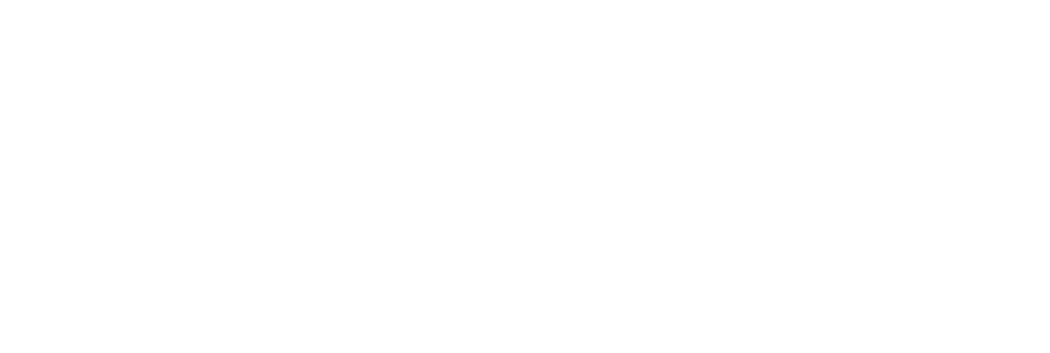 Colorado Siding Repair Logo - White